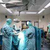 La chirurgia di rivascolarizzazione delle arterie tibiali - Corso teorico-pratico