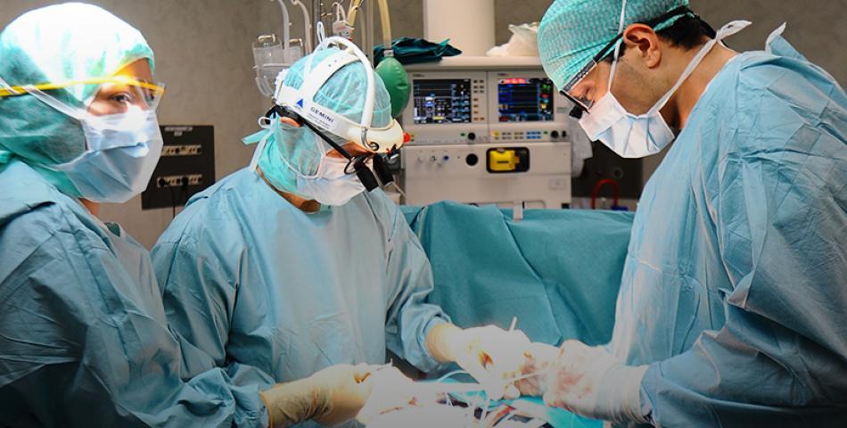 General Surgery Poliambulanza Brescia