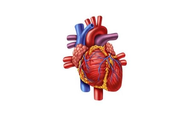 Miocardiopatia post-infartuale