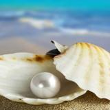 Trasforma le ferite in perle